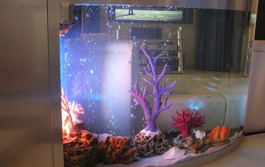 Мебельная отделка аквариума.