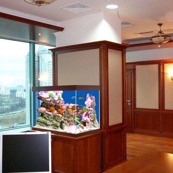 Проект речного аквариума
