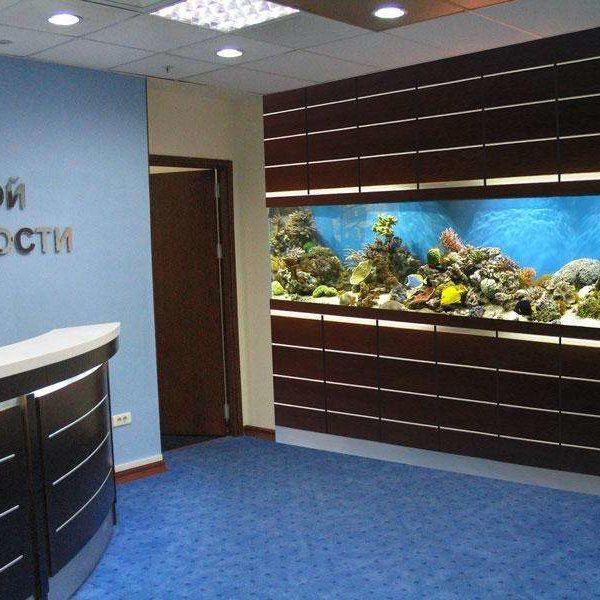 Проект морского аквариума