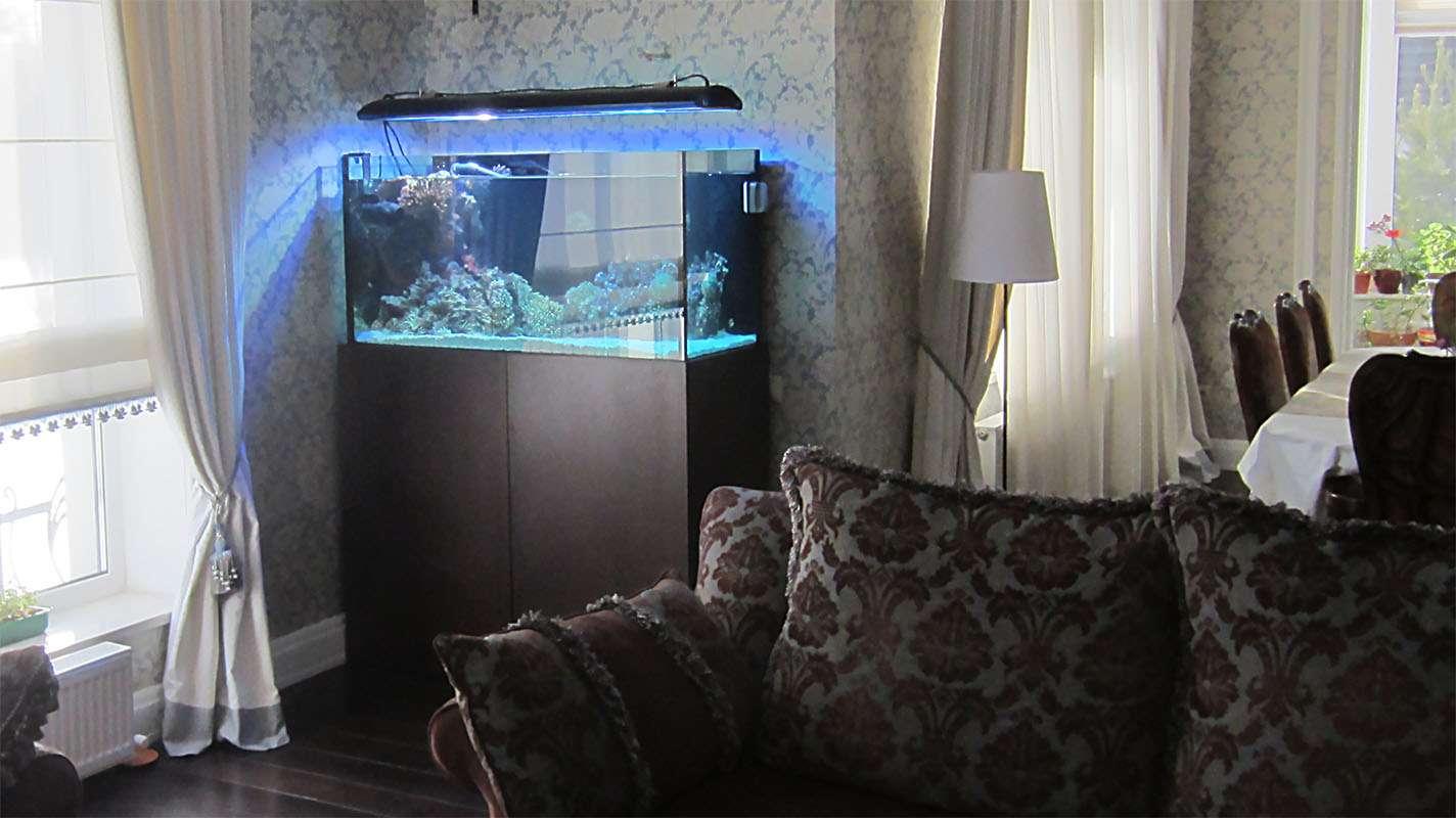Морской аквариум в интерьере частного дома.