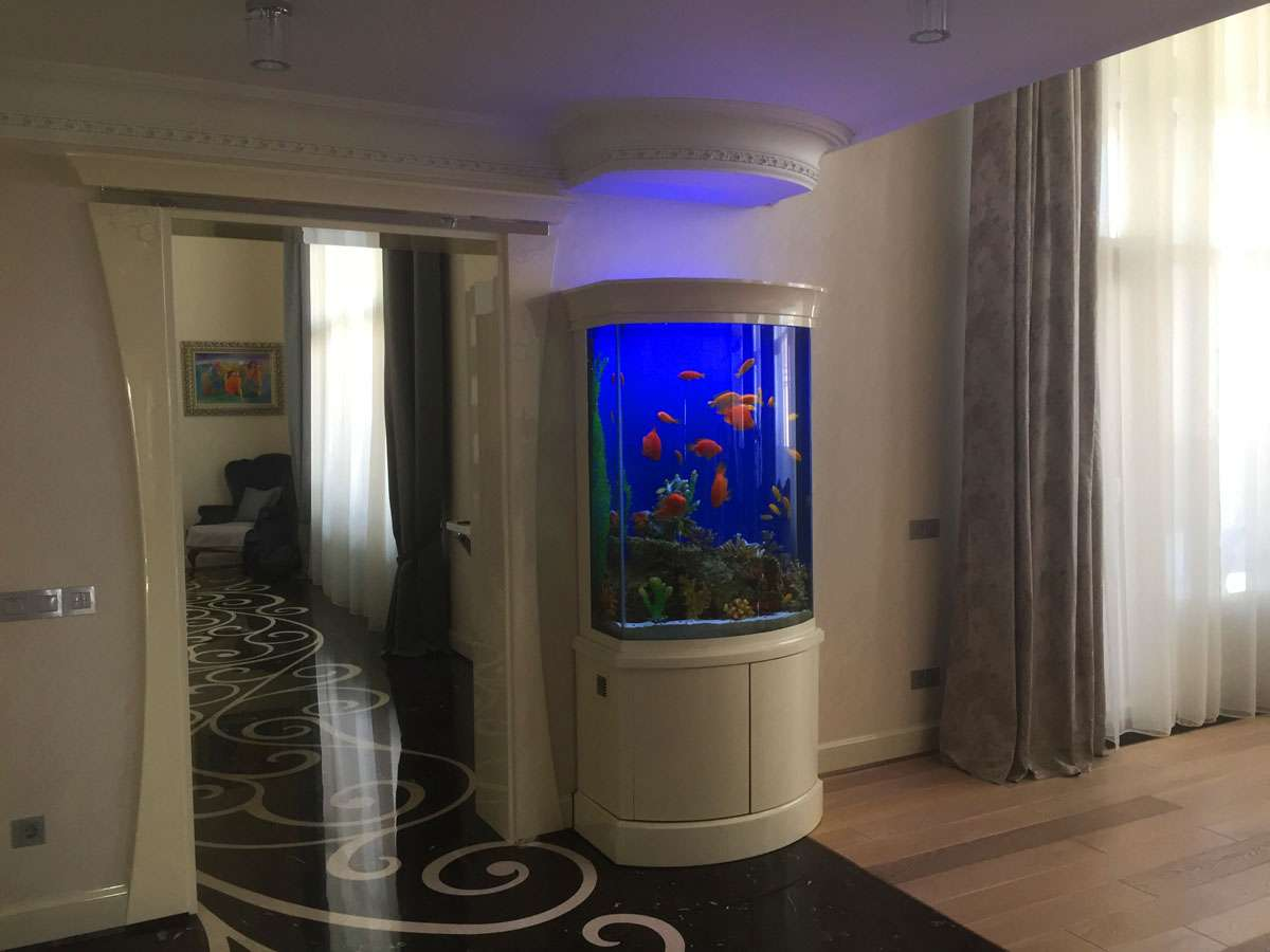 Речной аквариум в частном интерьере.