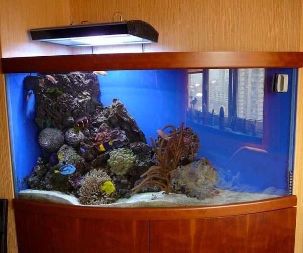 Морской аквариум 450л. в детской.