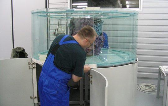 Изготовление Морского аквариума