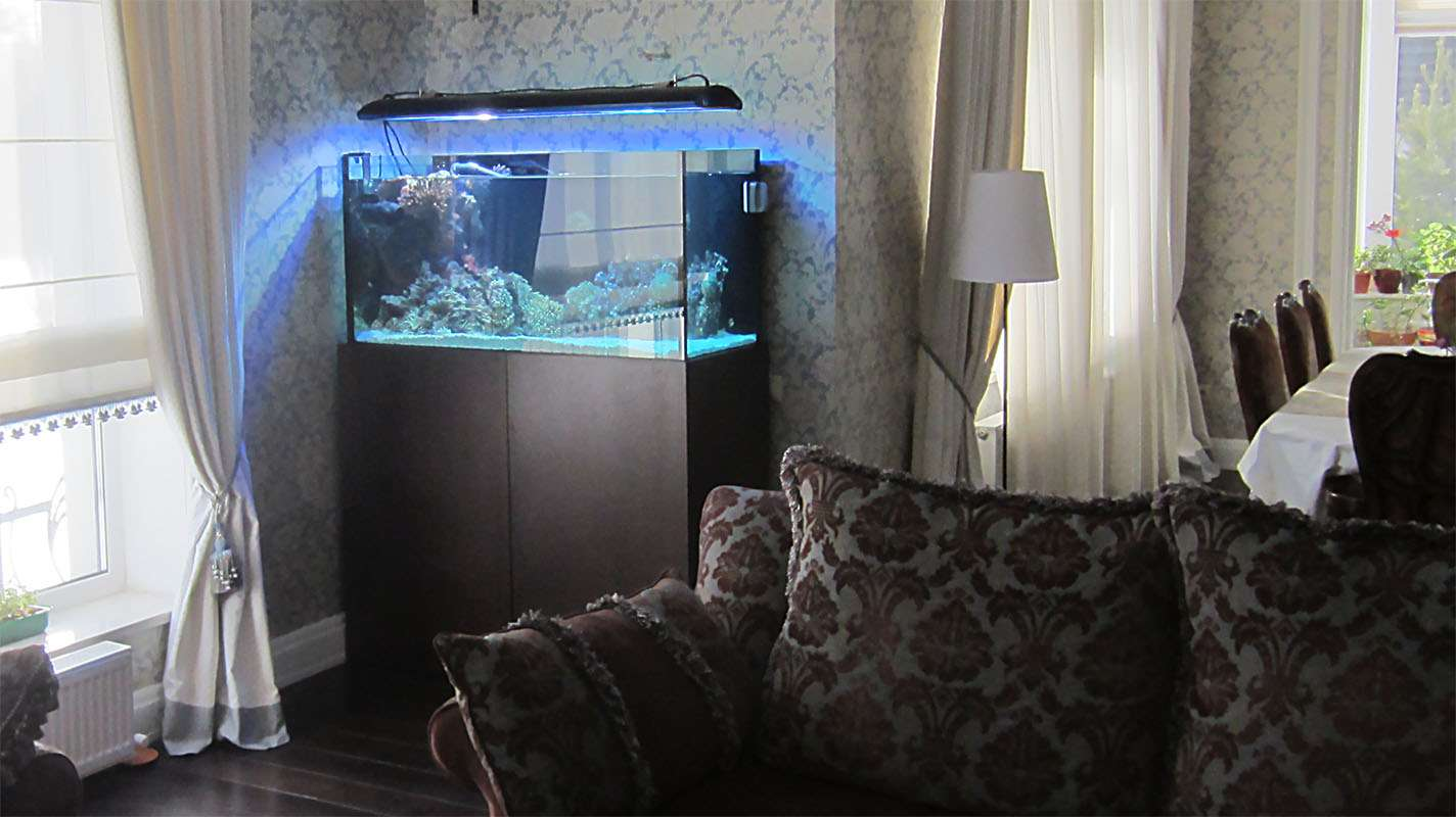 Морской аквариум в частном доме.